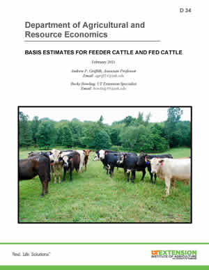D34 Publication cover